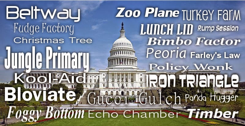 Image of the US Capitol Building with political jargon words around it.