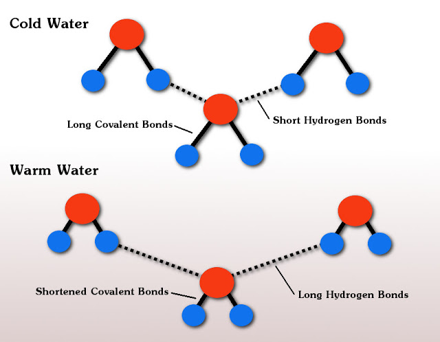 Change in bonds between cold and warm water when hot water freezes faster than cold water.