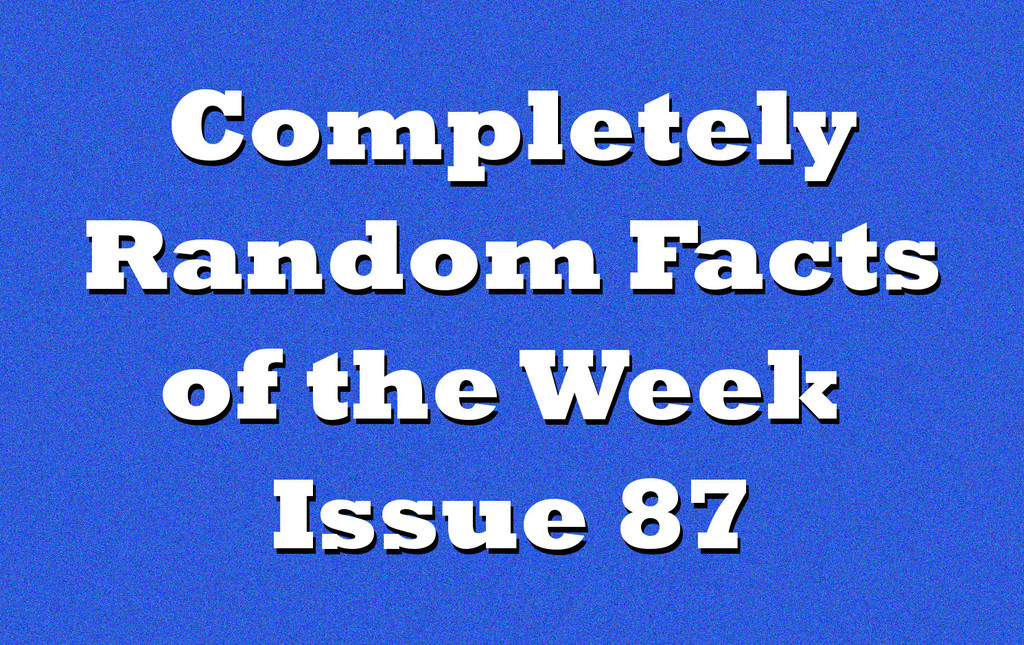 randomfactsheader87