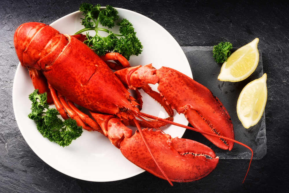 A cooked lobster on a plate.